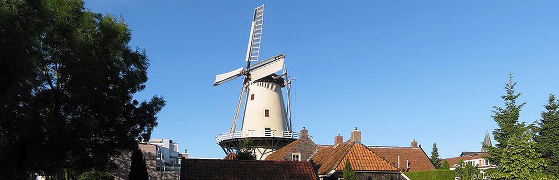 Mango Groningen-Haren