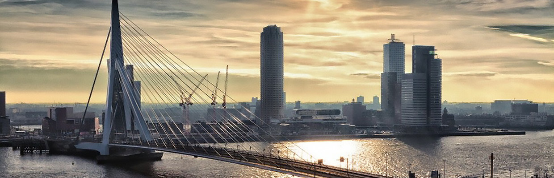 Mango Mobility Rotterdam